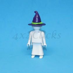 Sombrero Puntiagudo
